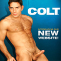 Click here to visit the COLT Studio Group